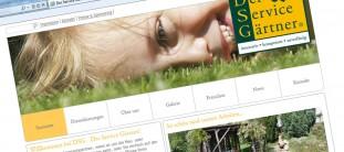 webdesign-referenz-dsg