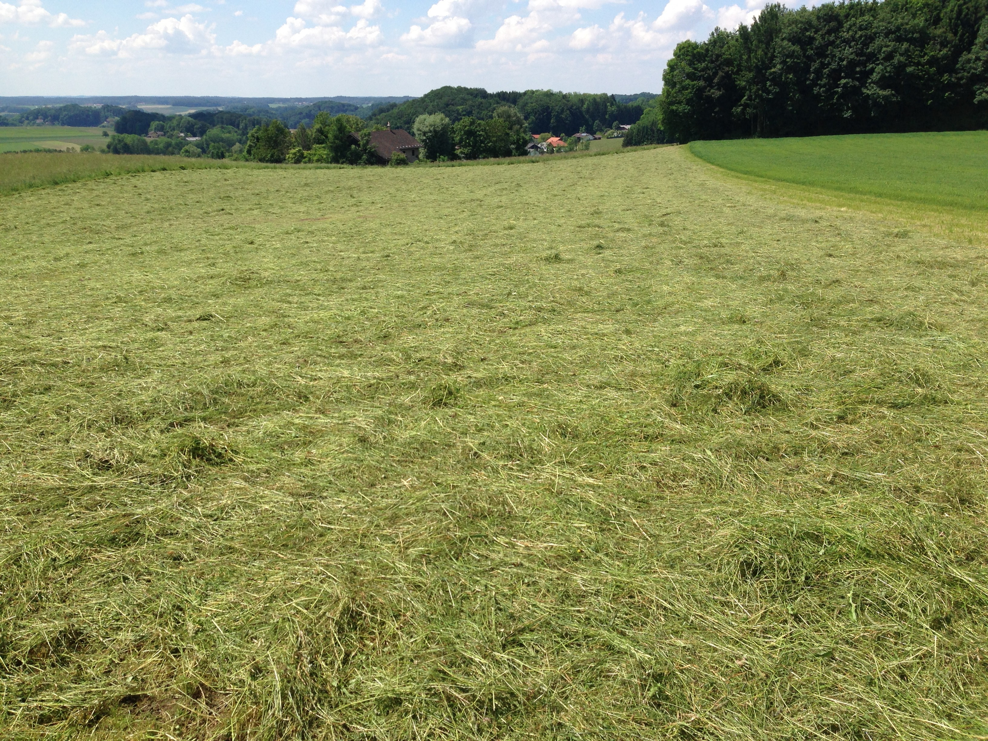 foto-landwirtschaft